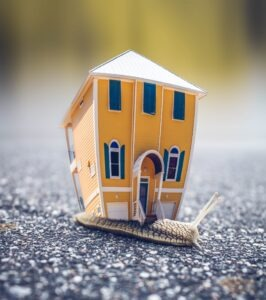snail with a house on its back for blog by Burnett Mortgages on can a mortgage broker get you a better deal.